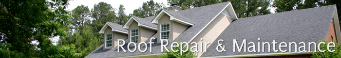 Roofing Services in NJ, including Clementon, Bridgeton & Cherry Hill.